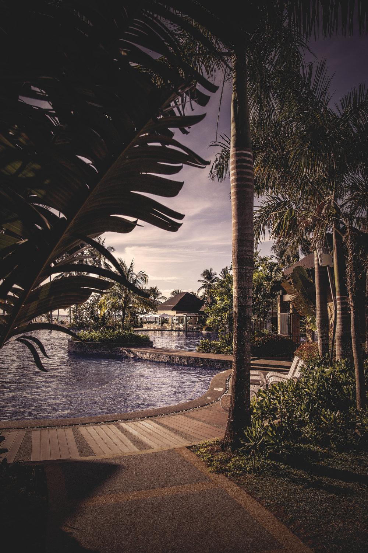 oasisinparadise_3000.jpg