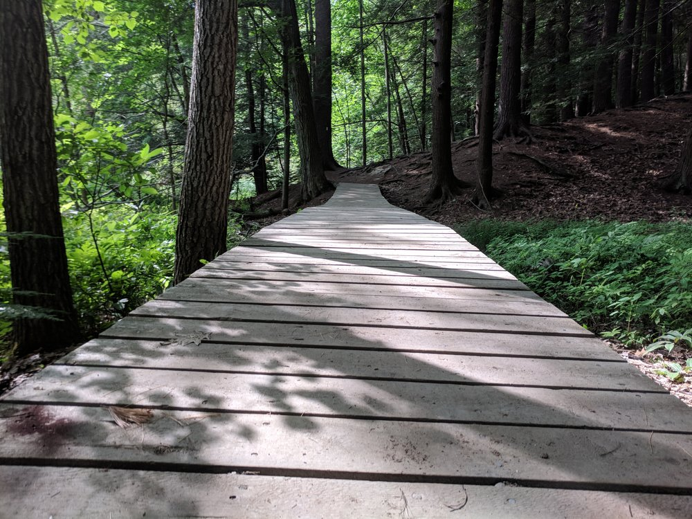 Jewel Falls, Portland Maine, July 14th, 2018 - original