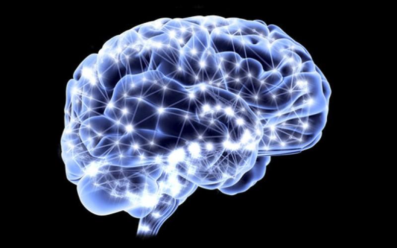 Peak Brain Performance Belmar.jpg