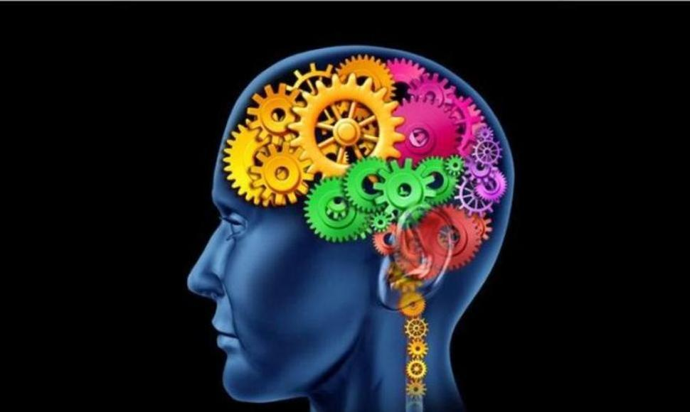 Peak Brain Performance Farmingdale.jpg