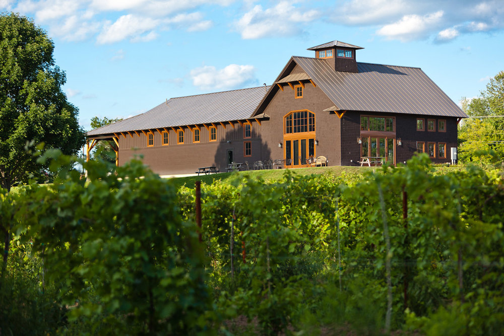 Shelburne Vineyard -