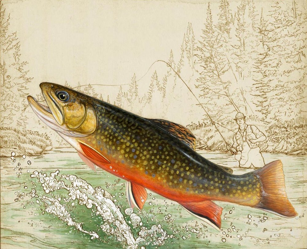 Brook Trout (Orvis Limited Edition Print)