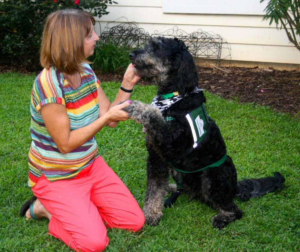 Jazzy was donated to the Canine Assistance program in memory of Jasmine, by Fountain Falls Goldendoodles. Canine Assistance provides training and matching of service dogs to those in need free of charge. She is a working PTSD dog for an American Veteran. So proud!