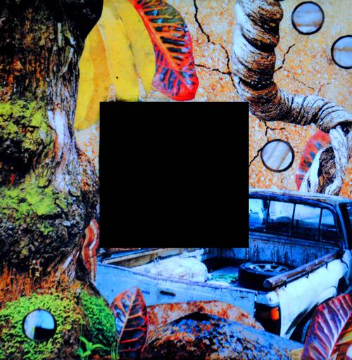 Mirror-Caribe-III.jpg
