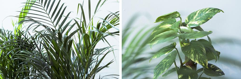 "Hanna Husberg | ""The World Indoors"" | All photos © I DO ART Agency."