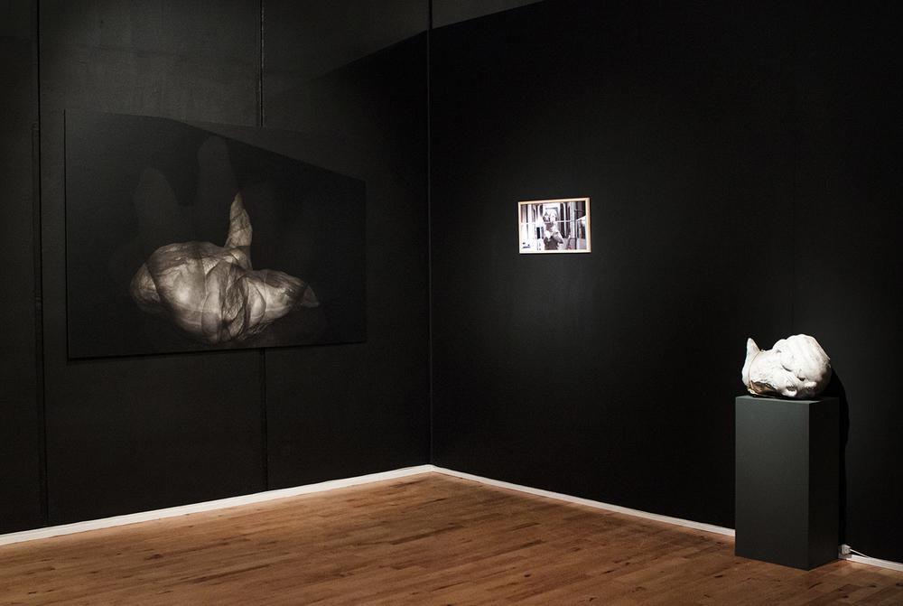 Installationsbillede af værket Embryo Belvedere.