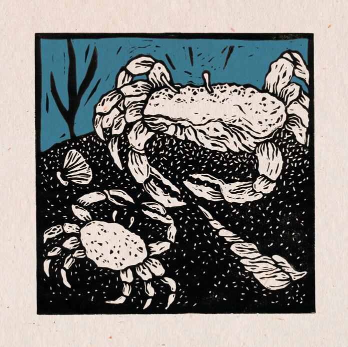 Krabben og dens mor.