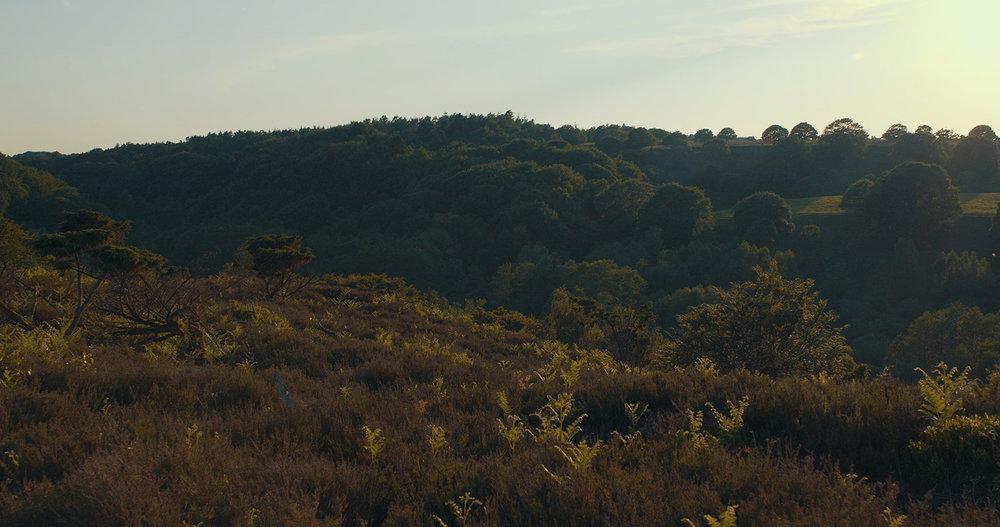 Still fra Omonia-filmen. Video af Thomas Dyrholm.