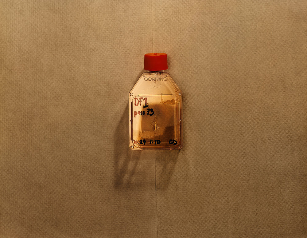 Taryn Simon, An American Index of the Hidden and Unfamiliar, 2007. Levende HIV, HIV Research Laboratory. Harvard Medical School, Boston, Massachusetts. Archival inkjet, 94,6 x 113 cm.