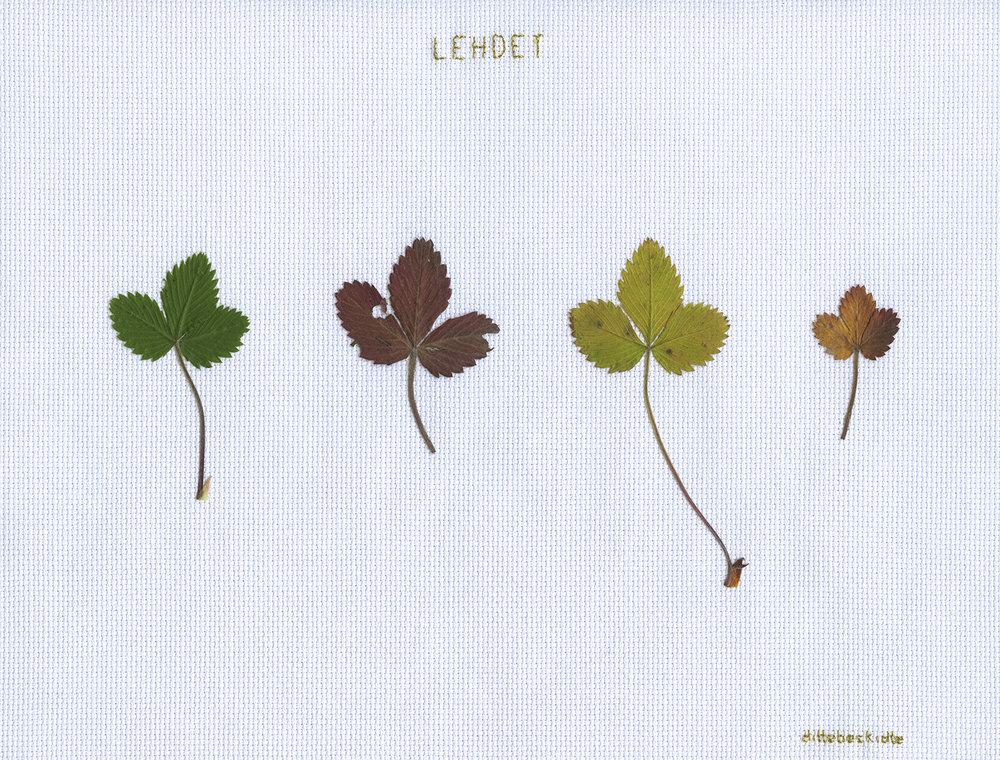 Lehdet (blade).
