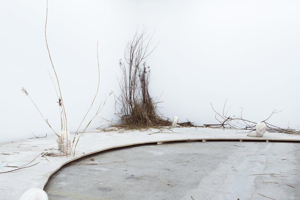Rolf Nowotny | Foto: I DO ART Agency.