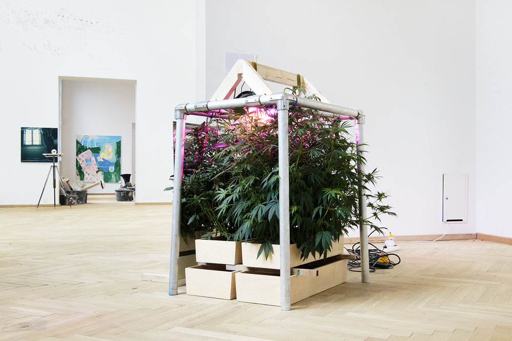 "Malte Starck ""A Hydroponic Grow System"" 