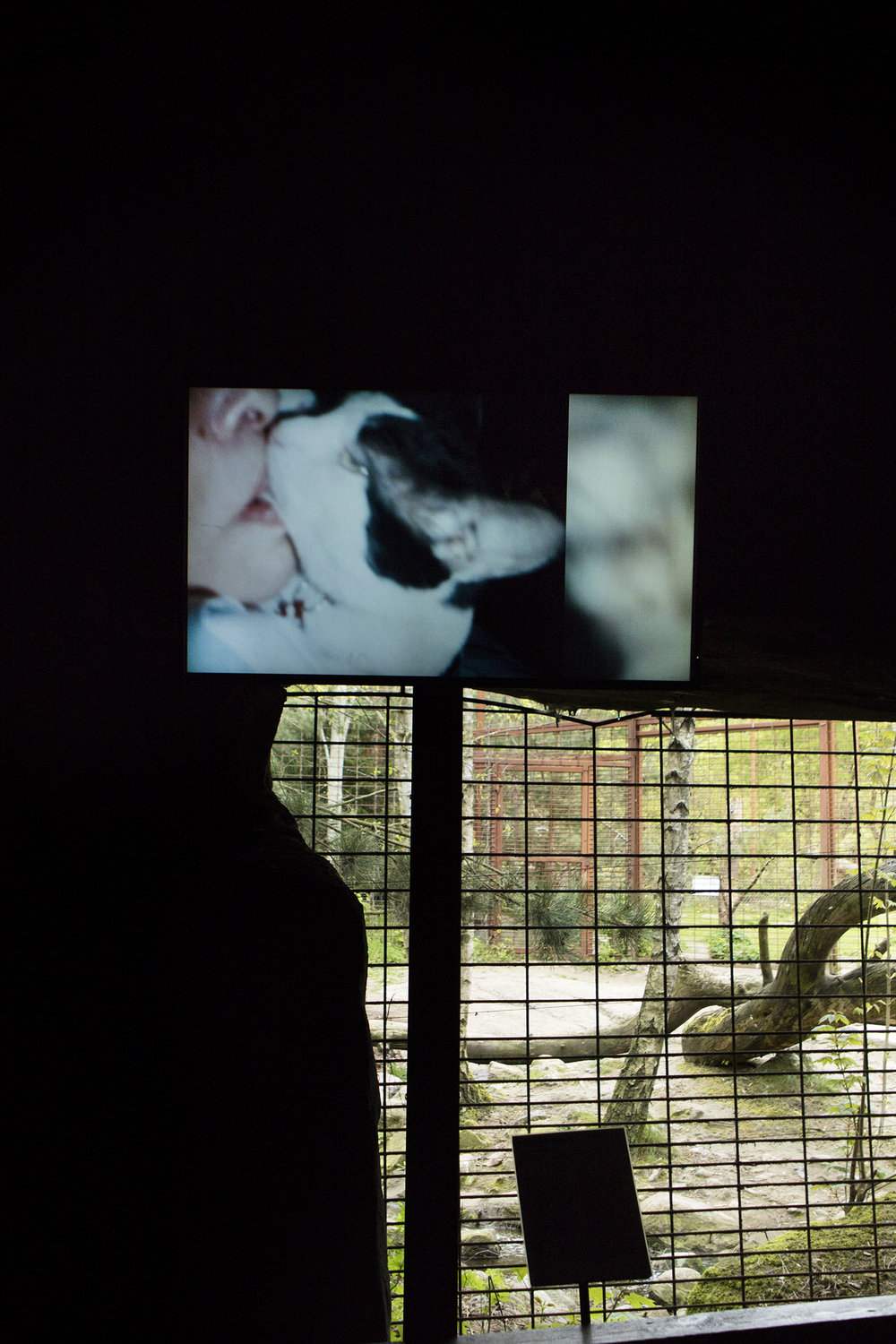 "Carolee Schneemann ""Infinity Kisses – The Movie"", 2008 
