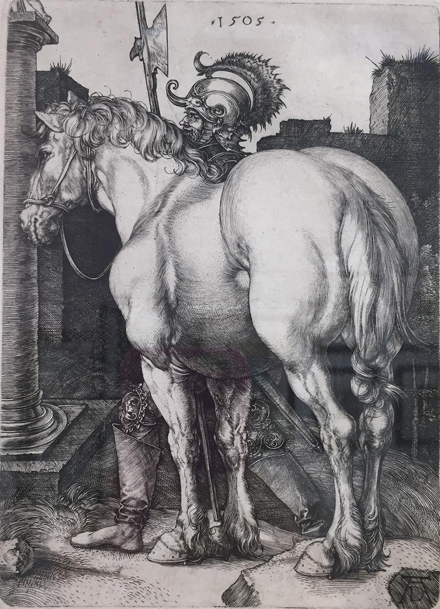 Albrecht Dürer Der grosse Pferd, 1505.