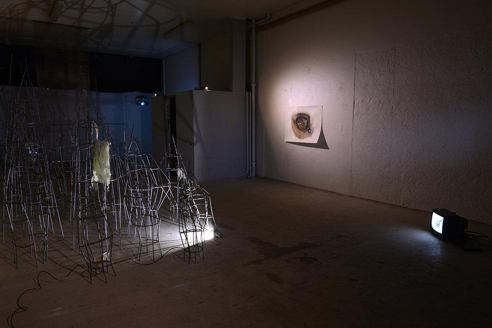 Øjet (installation view). Foto af Heidi Hove.