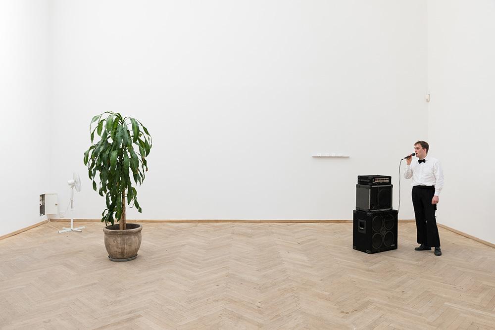 Afgang 2018, Kristoffer Raasted, 'Orchid Domain', 2018. Detail, Kunsthal Charlottenborg, 2018. Photo: David Stjernholm.
