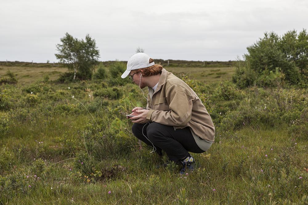 Amalie Smith, Radio Soldug: Vi græsser på den samme ø. (Lydværk, Læsø Kunsthal, 2017). Foto: Malle Madsen.