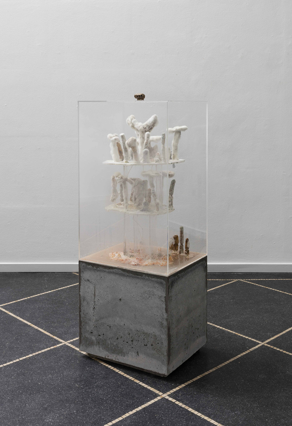 SI, Infrastructure, 2018 (Bronze, klar akryl, vand, palmeblade, plantefrø, skimmelsvamp, beton. 130 x 50 x 40 cm). Foto:Anders Sune Berg © Galleri Susanne Ottesen.