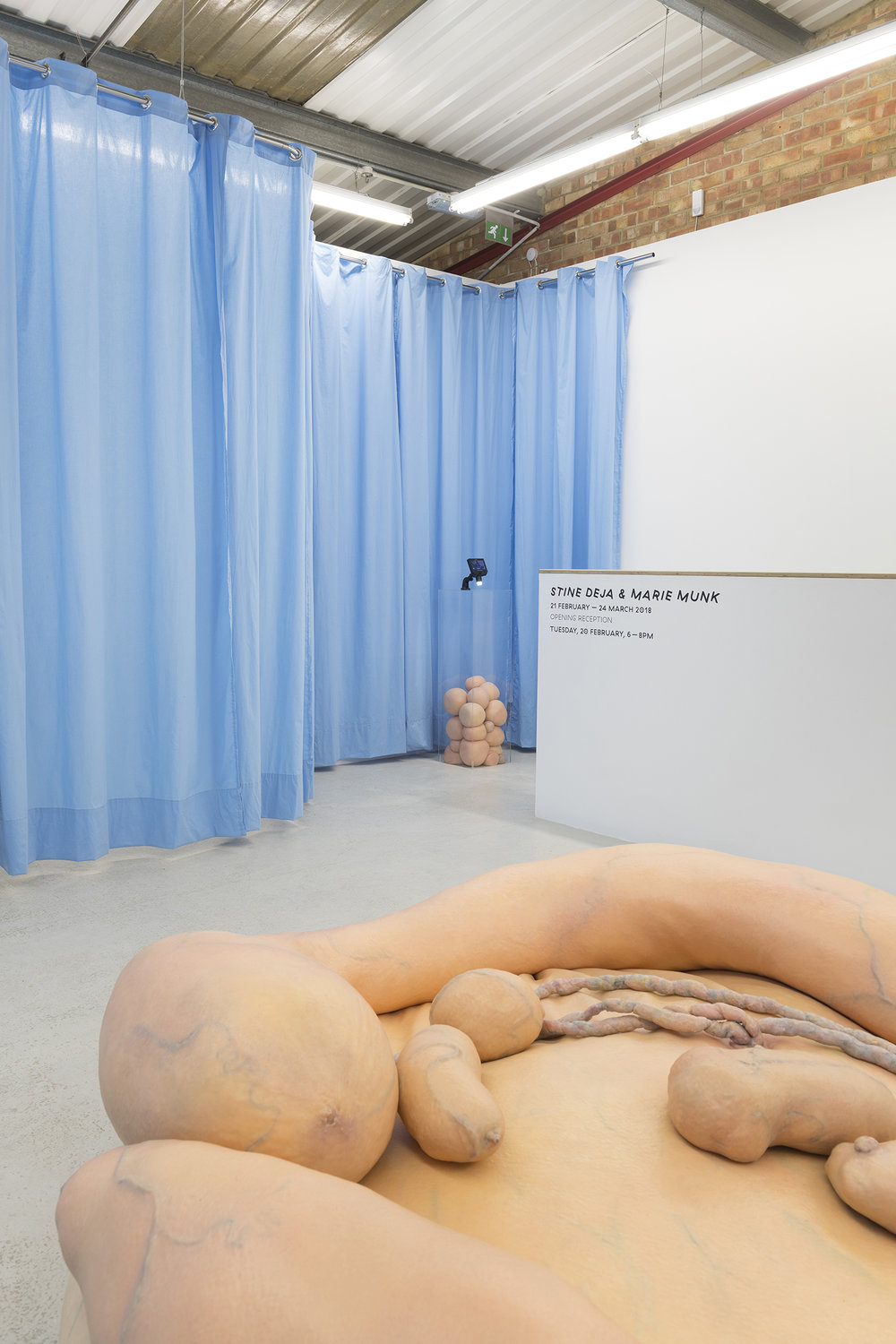 Stine Deja & Marie Munk, Synthetic Seduction. Installation view, Annka Kultys, 2018.