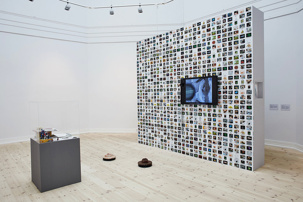 Lynn Hershmann Leeson, GMO Animals, Crops, Labs, 2014 & Seduction of a Cyborg, 1994. Foto: Kåre Viemose
