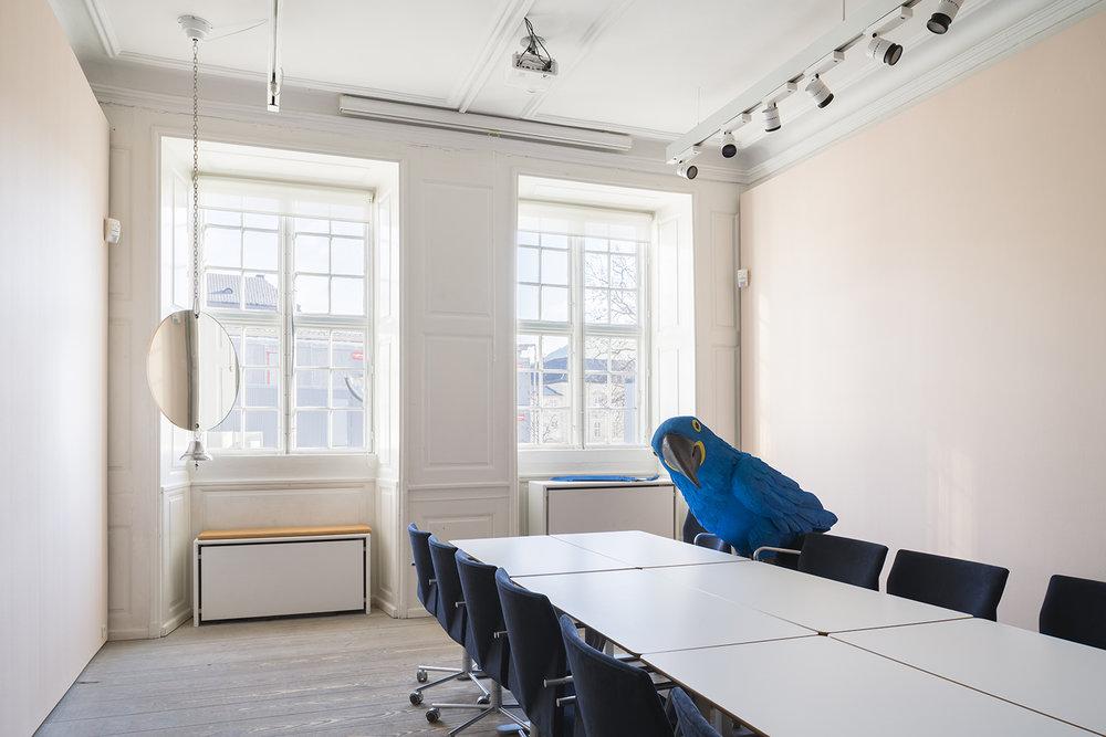 Randi & Katrine: Macaw & Macaw, (Installation i Montanasalen, Kunstforeningen Gl Strand), 2018. Foto: David Stjernholm.