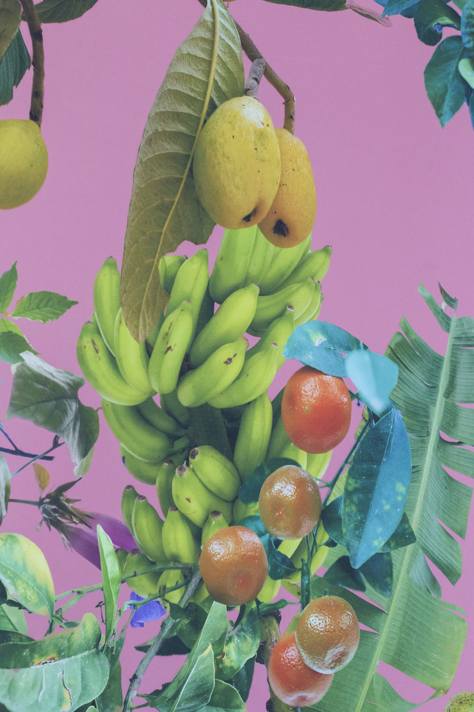 Fallen Fruit, Theatre of the Sun. Manifesta 12. Foto © I DO ART Agency.