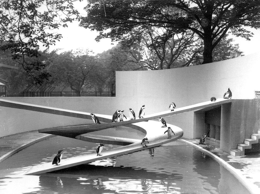 Penguin Pool, London Zoo, 1934 © ZSL.