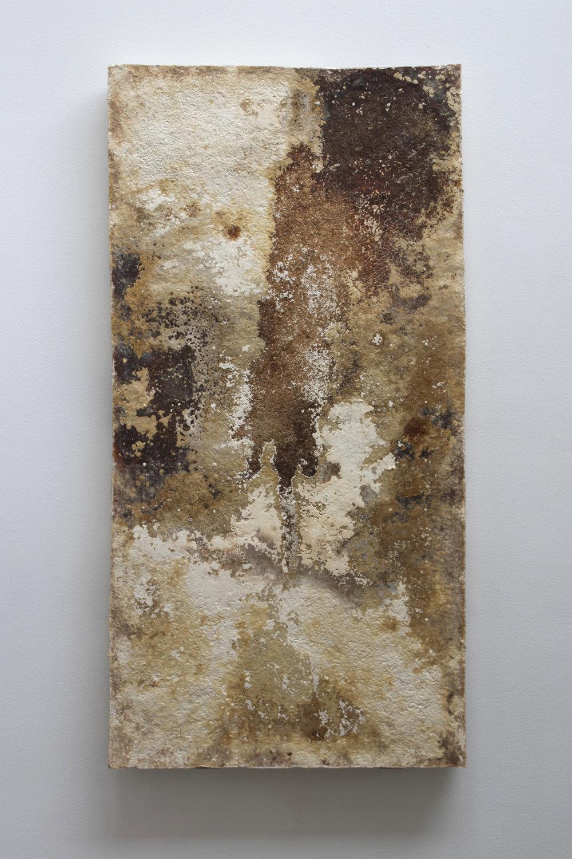 "Studio ThinkingHand ""Reishi,� 2018 (Reishi mycelium, hemp substrate. 60(w) x 120(h) x 5(d) cm)."
