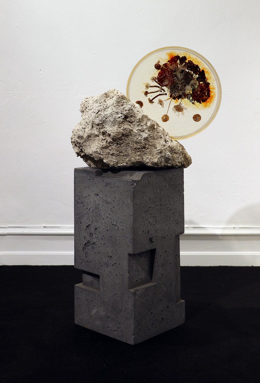"Studio ThinkingHand ""Landscape Portrait #4,� 2018 (Epoxy resin, limestone fossil, flora, fungi. Foraged September 2017 from Kongelunden, DK. 36(w) x 40(h) x 22(d) cm)."