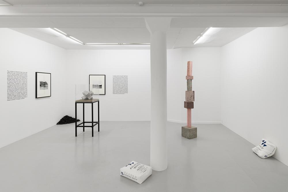 Facing Concrete, Galleri Kant. Photo: David Stjernholm.