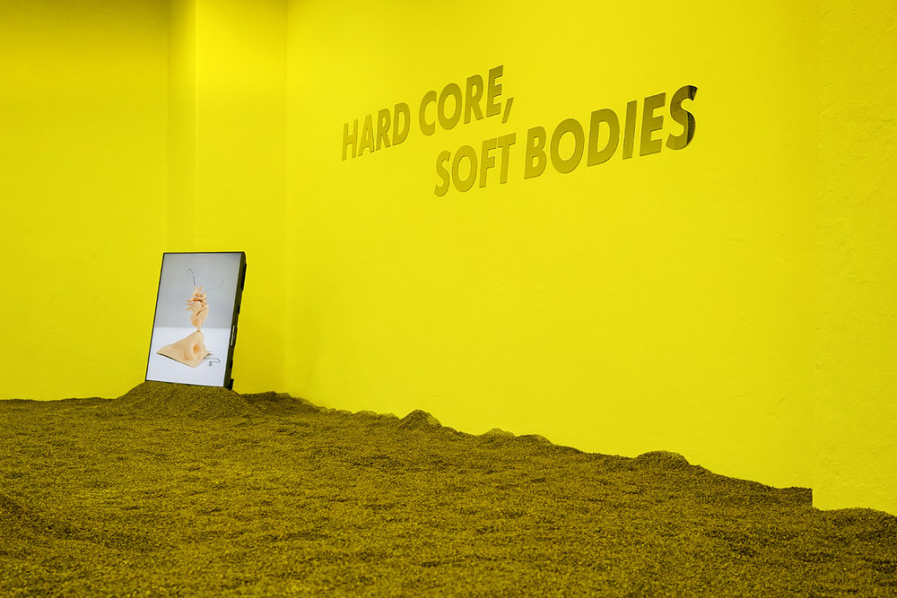"Stine Deja ""Hard core, soft bodies"" (installation view). Photo: Stine Deja."