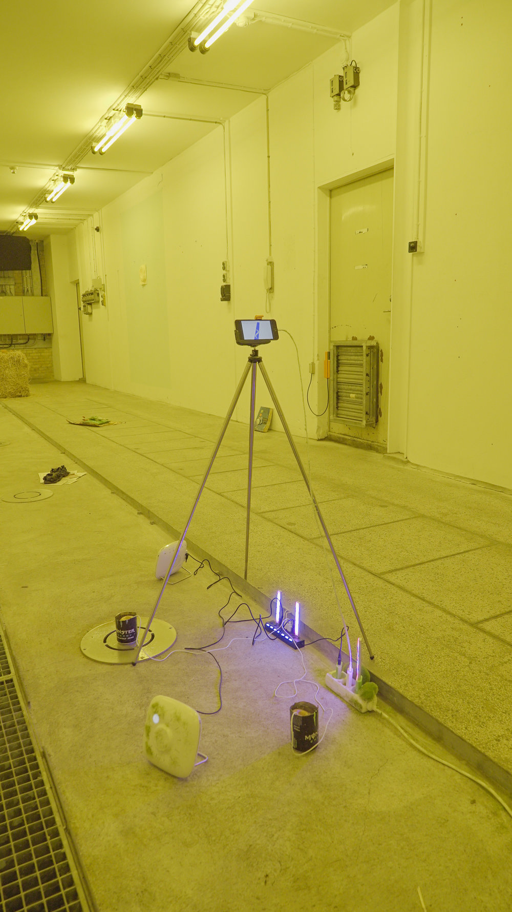 """Theodor Præst Nymark Jensen """"System of Nature,� 2018 (Tripod, Iphone 6 with charger (playing demo video from Openworm), sleeping machine 2X, faux grass, faux moss stone, humidifier, Monster Energy, grow light, USB splitter). Photo: Frej Volander & Theodor Præst Nymark Jensen."""