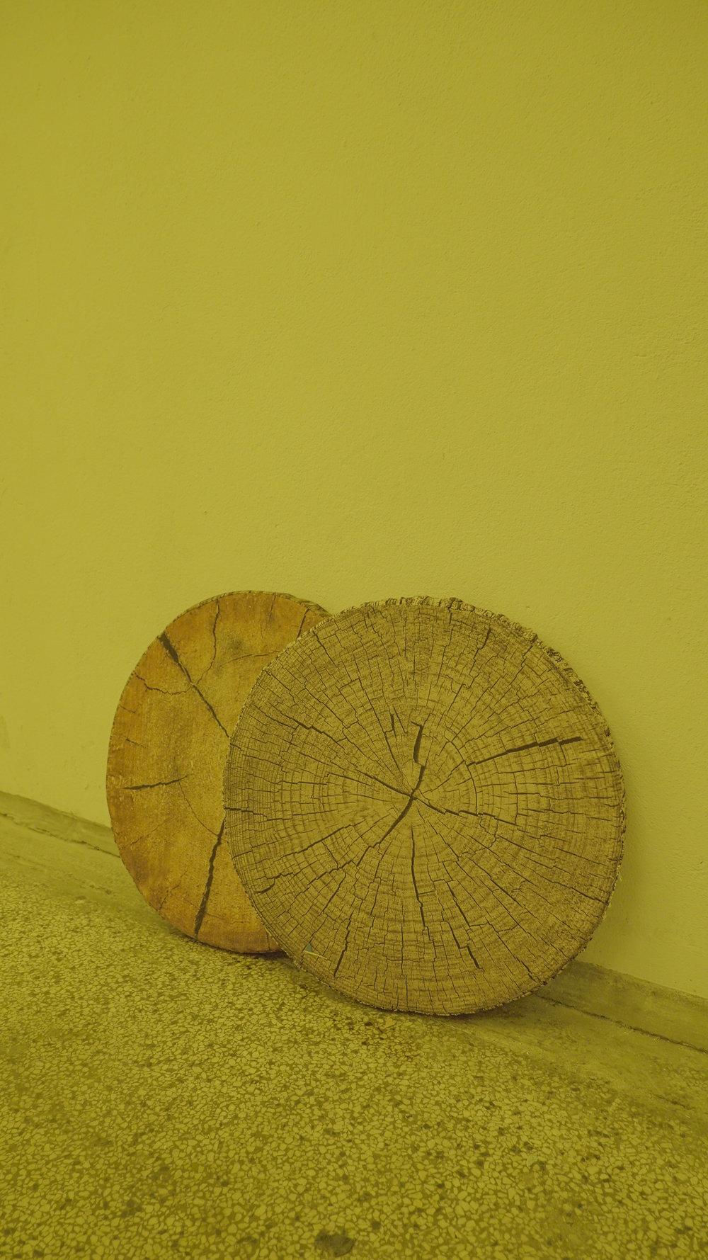 Faux wooden trunk slice cushion. Photo: Frej Volander & Theodor Præst Nymark Jensen.