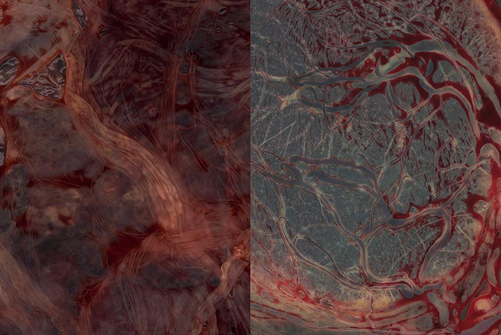Signe Vad. Placenta. 2 x forelæg til tæppeprint, 2018.