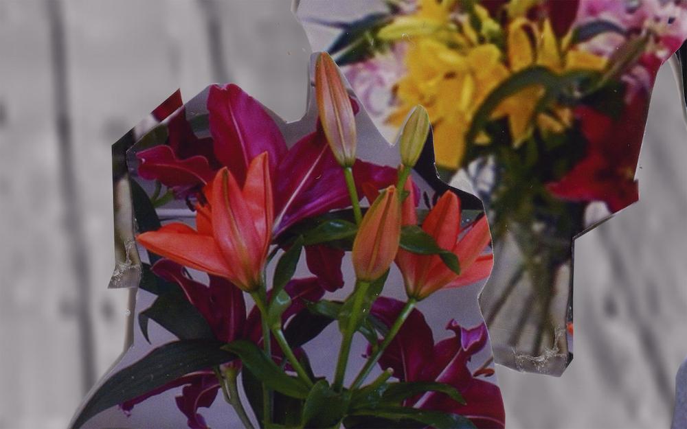 """Louise Bonde-Hansen """"Et rum til liljer"""""""