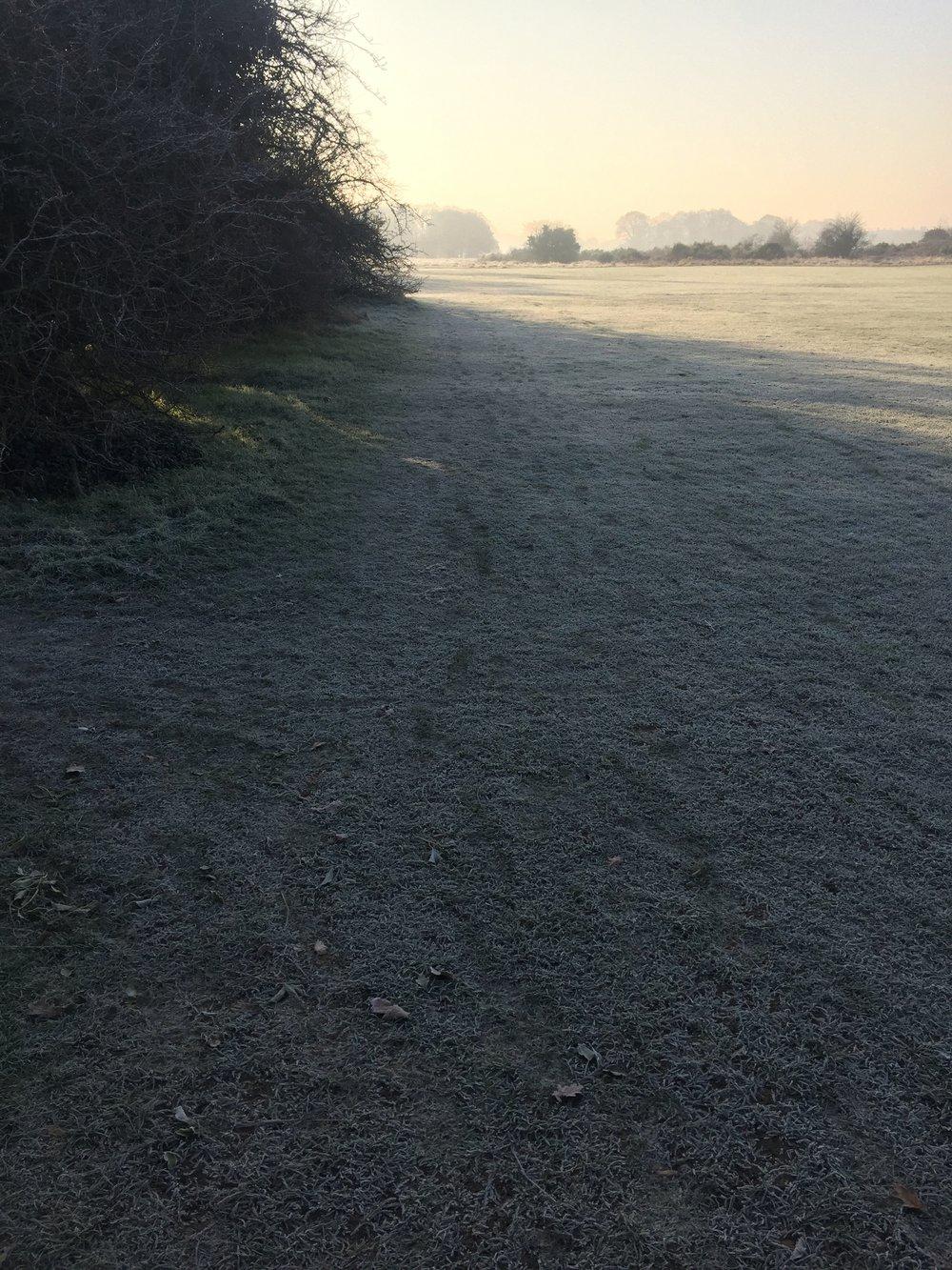 Veeeery forsty miles on Sunday morning.