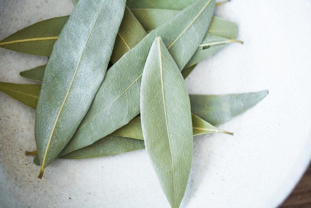 bay leaf.