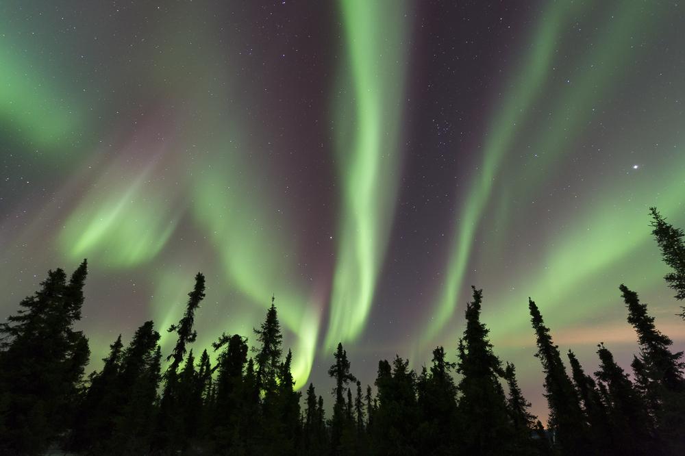 Aurora borealis: north of Fairbanks, AK. 11:52 PM