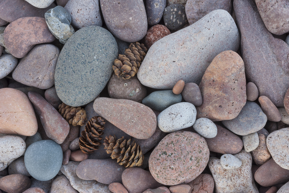 Beach pebbles and spruce cones