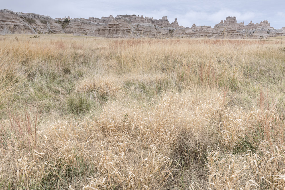 Buttes and grasslands