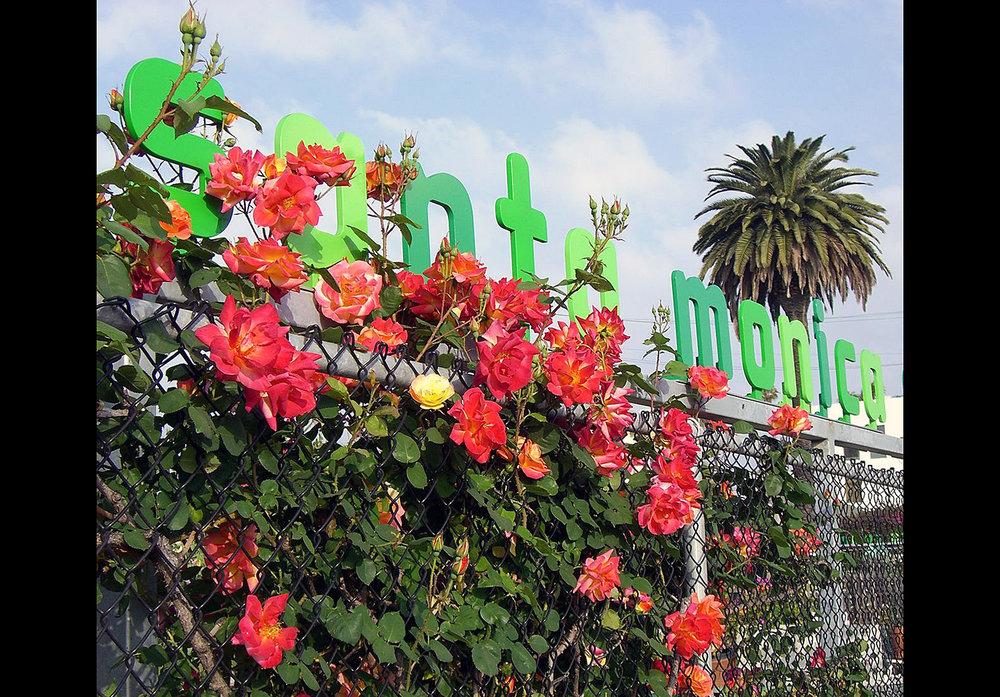 Santa Monica Community Garden