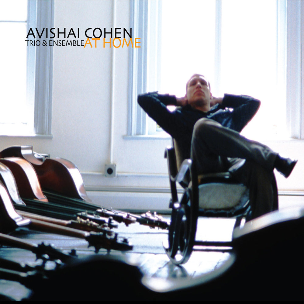 AVISHAI COHEN / AT HOME