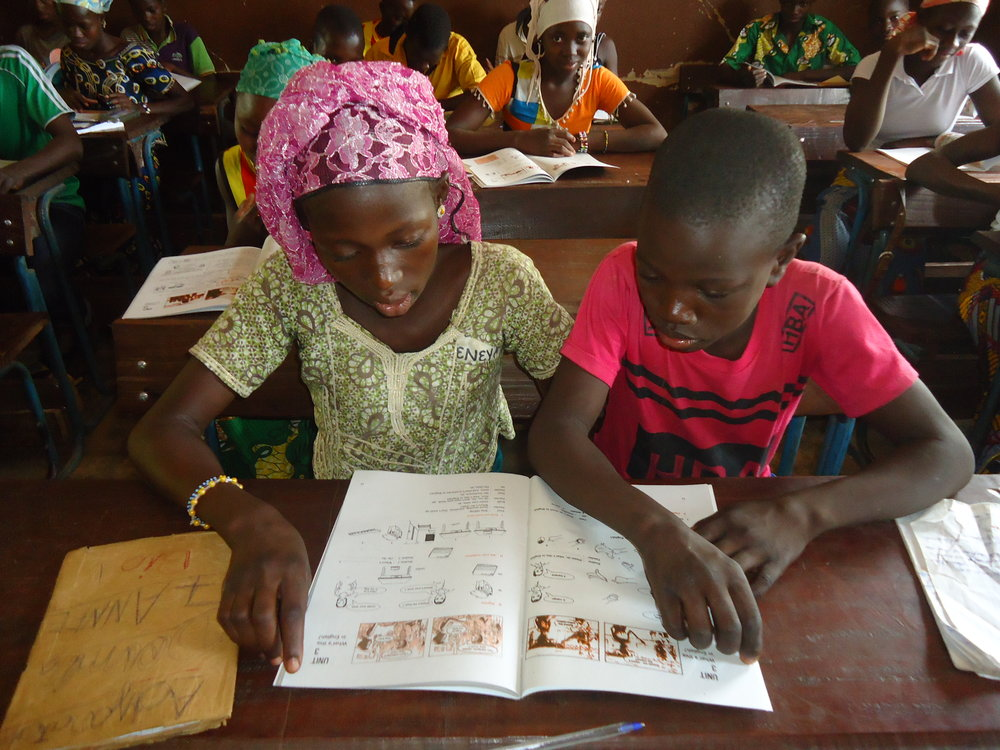 LEARNING TOOLS - Too many schools in Mali have no textbooks at all --  your gift will change that by providing textbooks, maps, and other tools.