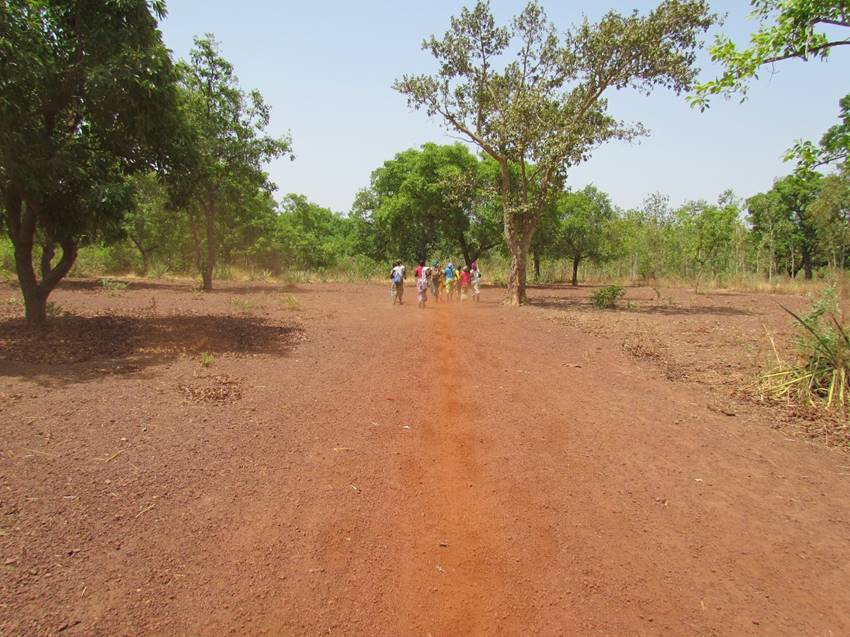 walkingawya.jpg