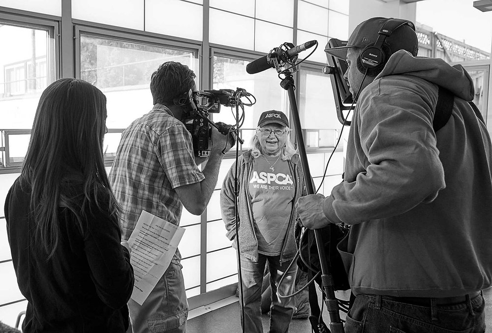 Testimonial interviews at the NYC ASPCA.