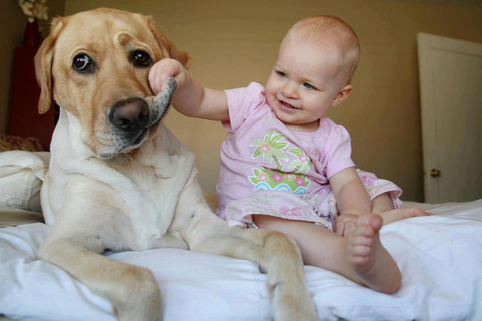 baby-baby-girl-cute-dog-Favim.com-598707.jpg