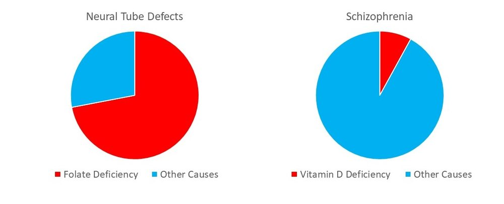 Most neural tube defects are due to folate deficiency. Not so for Vitamin D and schizophrenia.