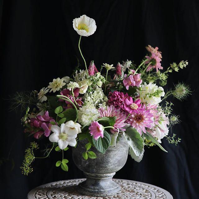 Um, hi poppy. 📷:@josiepayne  #centerpieces #sobridaltheory #seasonalfloweralliance #flowers #flowerstagram #instablooms #garden #gardengathered #gardentovase #slowflowers #imsomartha #marthablooms #inspiredbypetals #everydayibt #theknot #weddinginspo #growfloret #blooms #poppy #pursuepretty #lovelysquares #pink #beautifulblooms