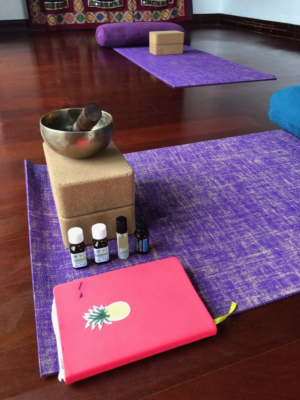 One on one Yoga Therapy and Manifestation sessions.