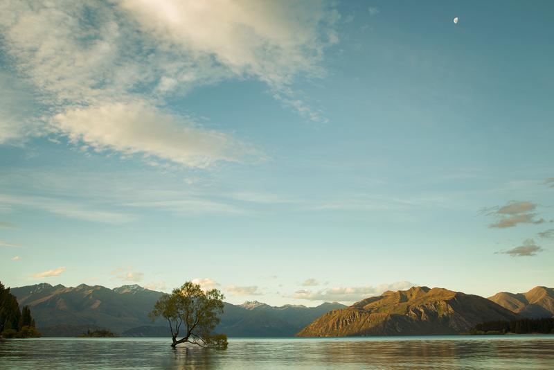 LakeWanaka1LR